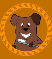 Dog Teeth Brushing Wheaton